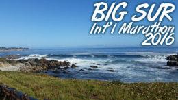 Monterey View - BSIM 2016