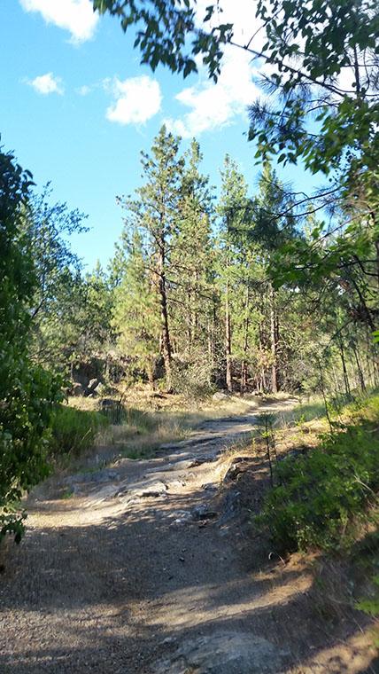 Dishman Hills Conservancy Area - An Early Climb - Chris-R.net