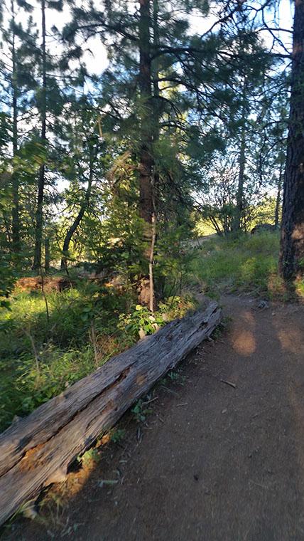 Dishman Hills Conservancy Area - Near Sargent Rd Access - Chris-R.net