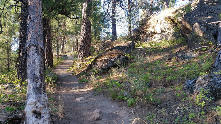 Dishman Hills Conservancy Area - More Ascent - Chris-R.net
