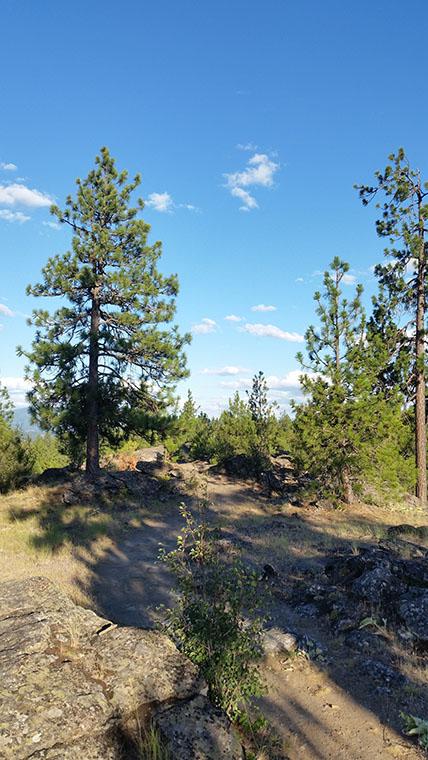 Dishman Hills Conservancy Area - Looking Back Along Nimbus Knob Trail - Chris-R.net