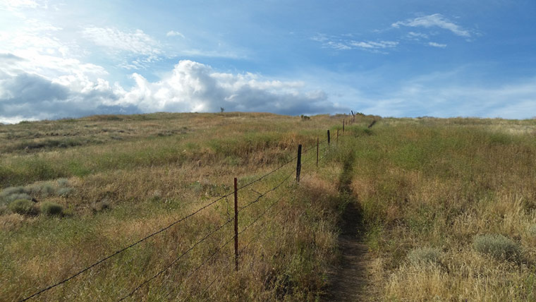 Saltese Uplands Trail System - Single Track Climb - Chris-R.net